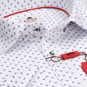 Koszule długi rękaw Koszula Kudi  listki